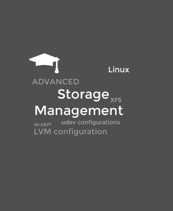 Advanced Linux Storage Management